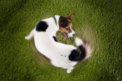 spinning1