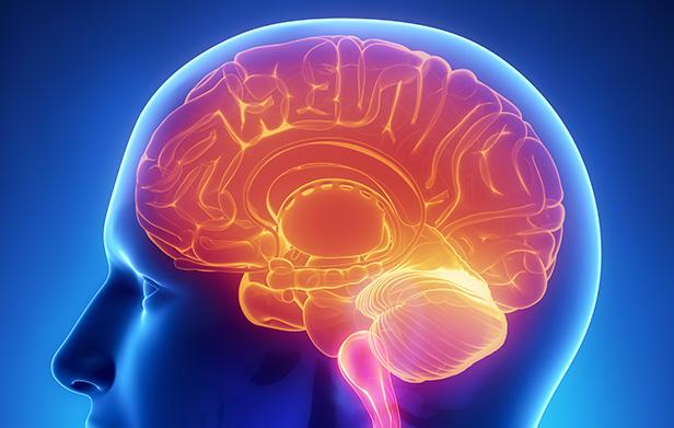 neurolinguistica_marketing